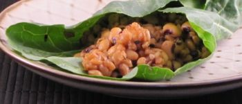 JL's Pressure Cooker Farro & Beans in Collard Green Wraps - Reader Recipes