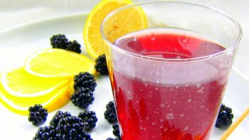 Blackberry Italian Soda?!?! Making Fruit Extracts
