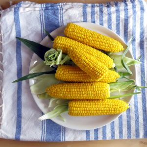 Easy Pressure Cooker Corn on the Cob + Tips!